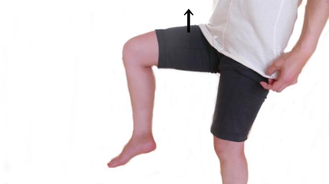 ※腸腰筋の動き
